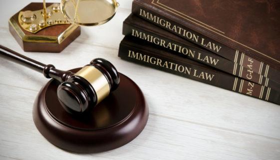 leyes-4480x2967